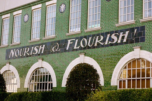 Nourish and Flourish courtesy ScribbleTaylor via Flickr CC