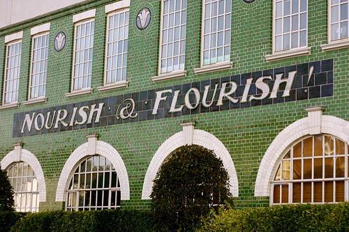 Nourish and Flourish courtesy ScribbleTaylor via Flickr CC